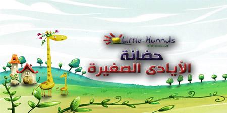 Little Hands Academy