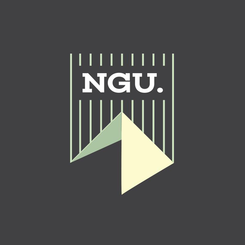 Newgiza University - NGU<